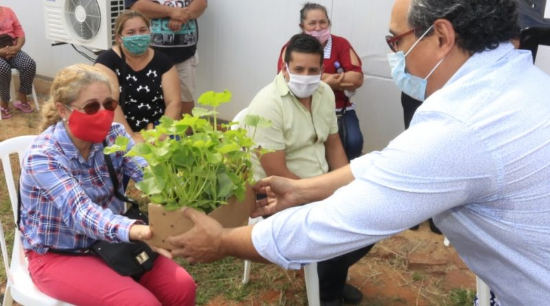 Productores recibirán otros 120.000 plantines de hortalizas y bolsas de cal agrícola