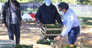 """LA SOLIDARIDAD NO DESCANSA. Kits de víveres y cuatro mil plantines de frutilla entregamos al Comité """"31 de enero"""" de Costa Fleitas, Areguá."""
